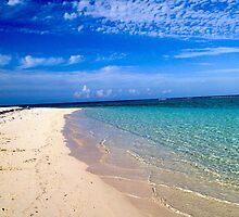 Little Cayman Island by Buttermilkphoto