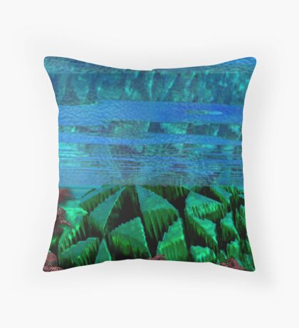 Underwater artifacts Throw Pillow