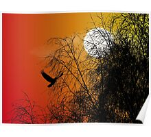 Bird Silhouette, Photoshop gradient, Brereton Country Park Poster