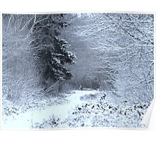 Snow at Havant Thicket Poster