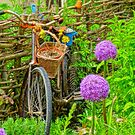 Bicycle in the garden by artshop77