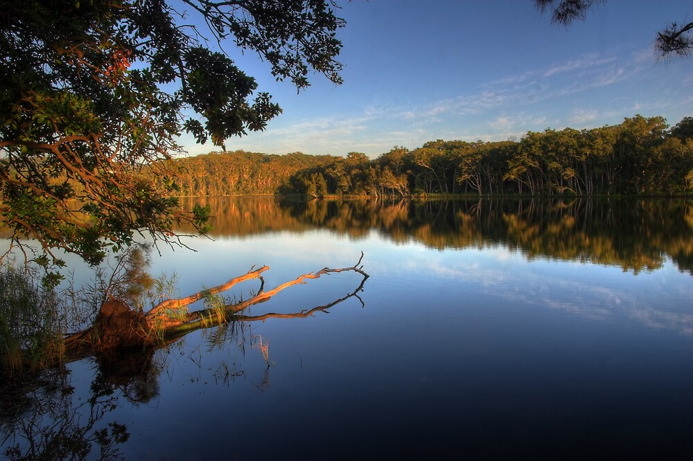 Morning Reflections 3 by Mike Salway