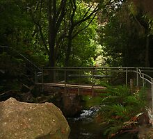 Leura Cascade Crossing Bridge by Evita
