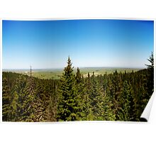 Cypress lookout Poster