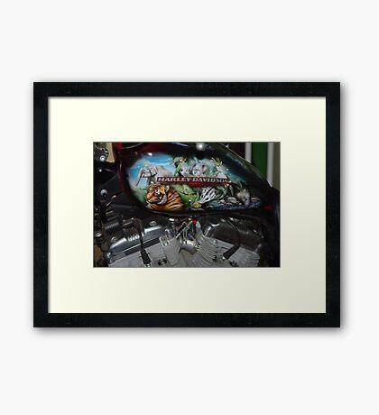Australia Zoo Raffle Framed Print