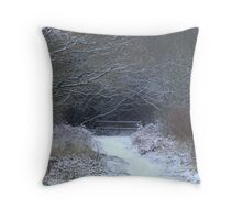 Snow appeal Throw Pillow