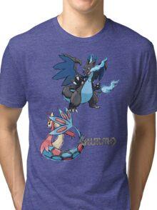 Kelly's Mega Charizard X & Milotic Tri-blend T-Shirt