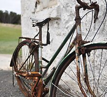 Retired Bicycle by Catherine C.  Turner