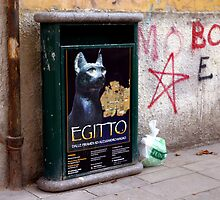 Gatto Nero by phil decocco
