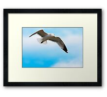 Birds eye view Framed Print