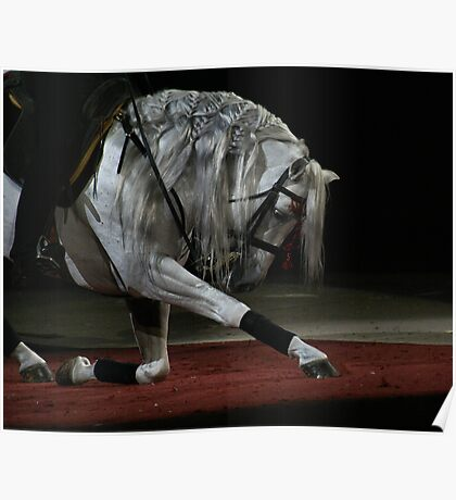 Bowing Horse Poster