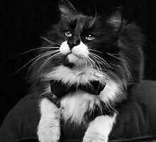 Billy Katt by Sharon Morris