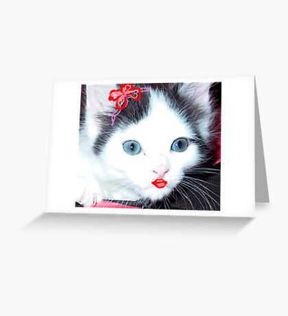 Glamour Kitty Greeting Card