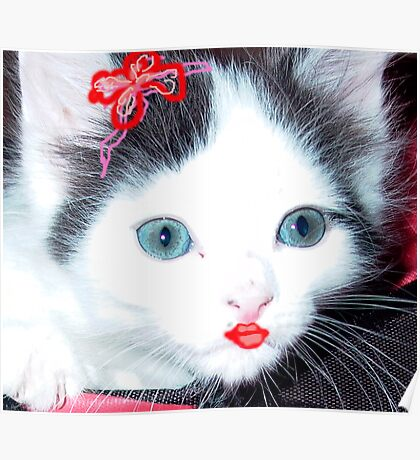 Glamour Kitty Poster