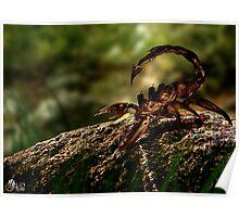 Escorpion Robot Poster