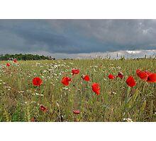 Dramatic Estonia Photographic Print
