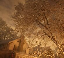 Winter in The Suburbs by Amy E. McCormick