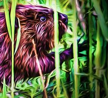 Beaver in the Reeds by wrench