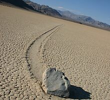 The Racetrack - Death Valley, California by CarolM