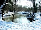 Snow On the River Wey by Colin  Williams Photography