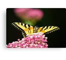 Flowers and Butterfly Art Canvas Print