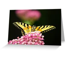 Flowers and Butterfly Art Greeting Card