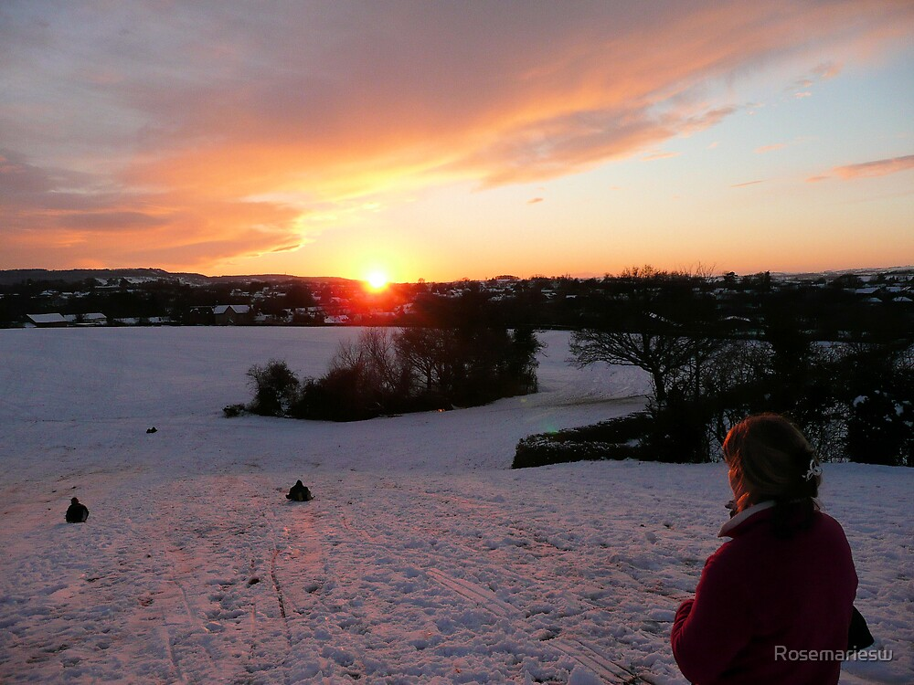 Sledging Into The Sunset by Rosemariesw
