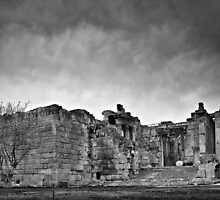 Temple of Bacchus by Tony Elieh