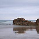 Nettle Bay Tasmania by Martin Hampson