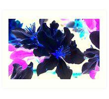 Inverted Blooms Art Print