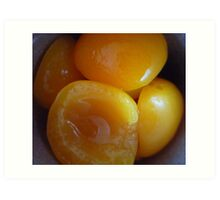 Juicy Apricots Art Print