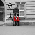 Queen's welsh guard by flynny