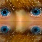 Gracie Eyes by thegrizz15