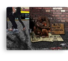 Homeless-Chimps-Justin-Beck-Picture-2015083 Canvas Print