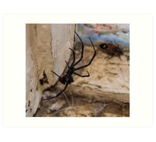 Hello, Mr. Spider Art Print