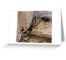 Hello, Mr. Spider Greeting Card