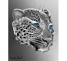 Leopard-Old-Blue-Eyes-Justin-Beck-Picture-2015098 Photographic Print