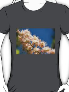 Macro of blooming Aesculus T-Shirt