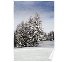 Snow laden Poster
