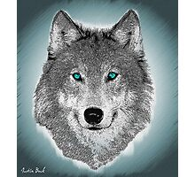 Wise Wolf Justin Beck Picture 2015089 Photographic Print
