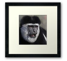 Amazed....  Framed Print