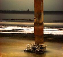 Old Salt by TingyWende