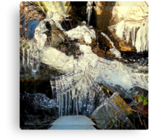 Ice Lady in Her Magic Chamber Canvas Print