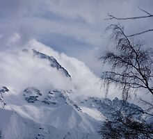 View through the trees, Les Deux Alpes, The French Alps by Elizabeth Turner
