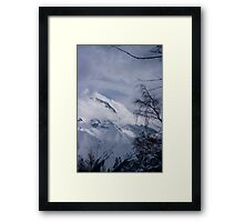 View through the trees, Les Deux Alpes, The French Alps Framed Print