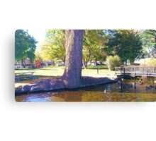Bishop park Canvas Print
