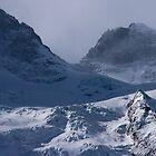 Glacier de la Meije, The French Alps by Elizabeth Turner