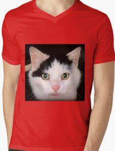 Olaf Mens V-Neck T-Shirt