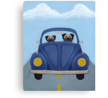 Pugs in a Bug Canvas Print