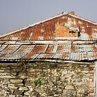 rusty roof by Anne Scantlebury
